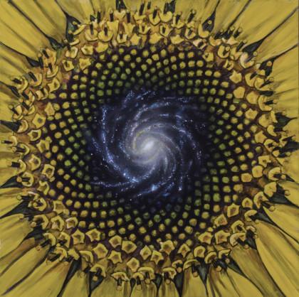 Fibonacci Simon Kregar