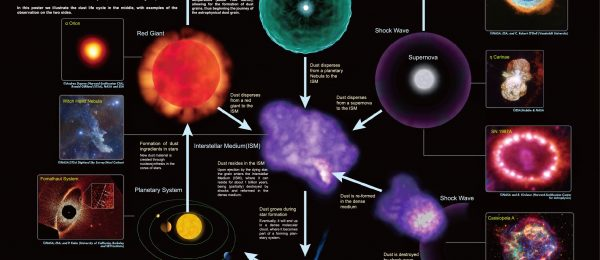Life cycle of cosmic dust